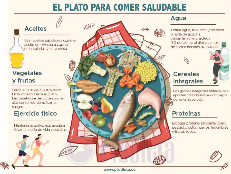 Plato Harvard Saludable